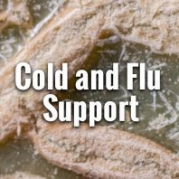 Cold Flu Prevention